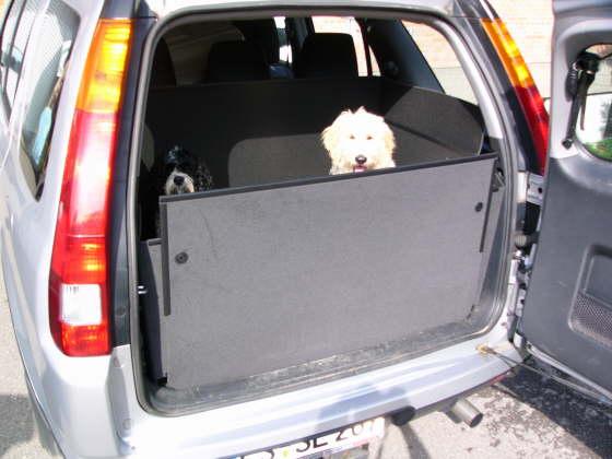 hundebox honda crv vor 2006 hundetransportbox honda crv vor 2006. Black Bedroom Furniture Sets. Home Design Ideas